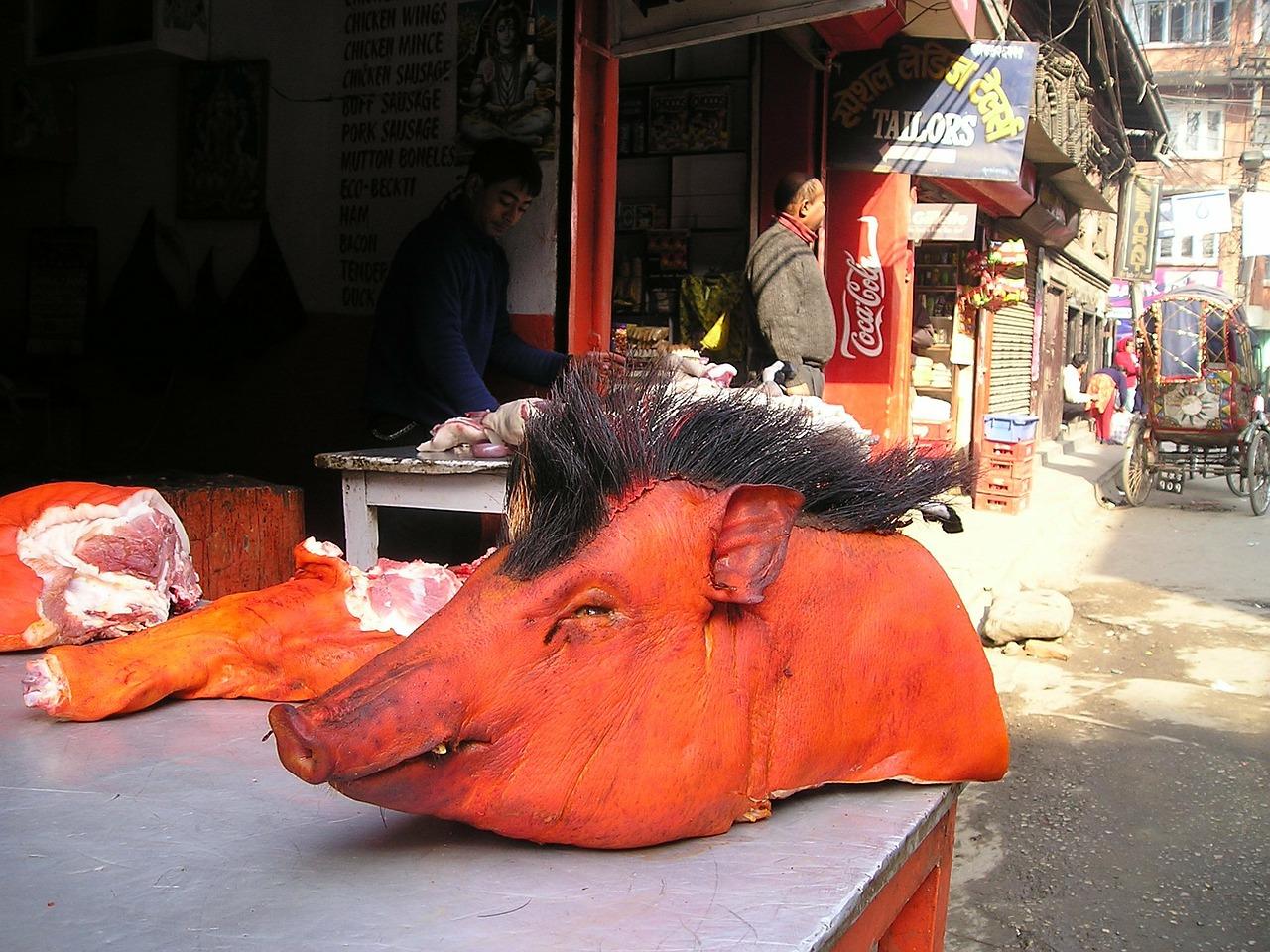 """testa di maiale sul banco di una macelleria all'aperto. immagine rappresentativa del racconto """"Il Macellaio"""""""